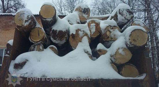 Украли в Ямпольском районе, везли на Глухов?